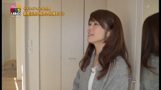 2017年2月4日放送 セキスイハイム「スマートハイムシティ久保田」